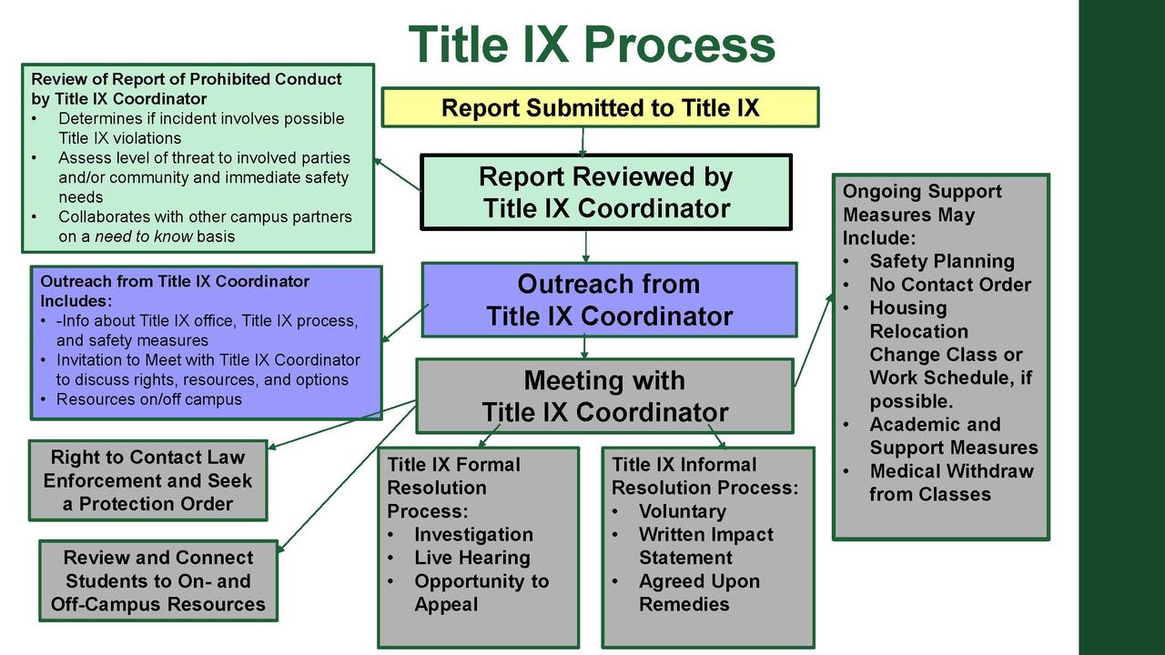 Image of Title IX Overview Flowchart
